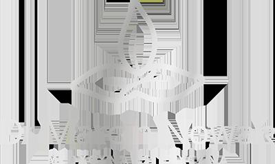 logo_silver